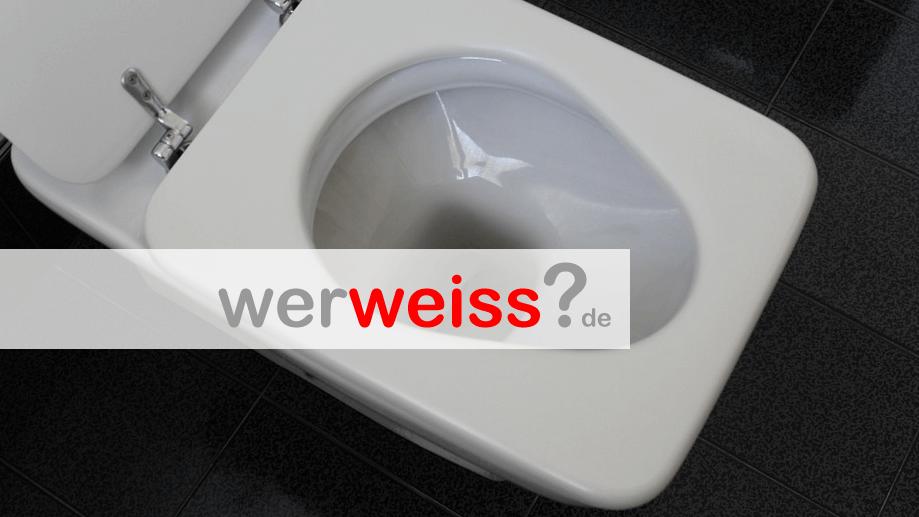Wie putzt man die Toilette richtig?