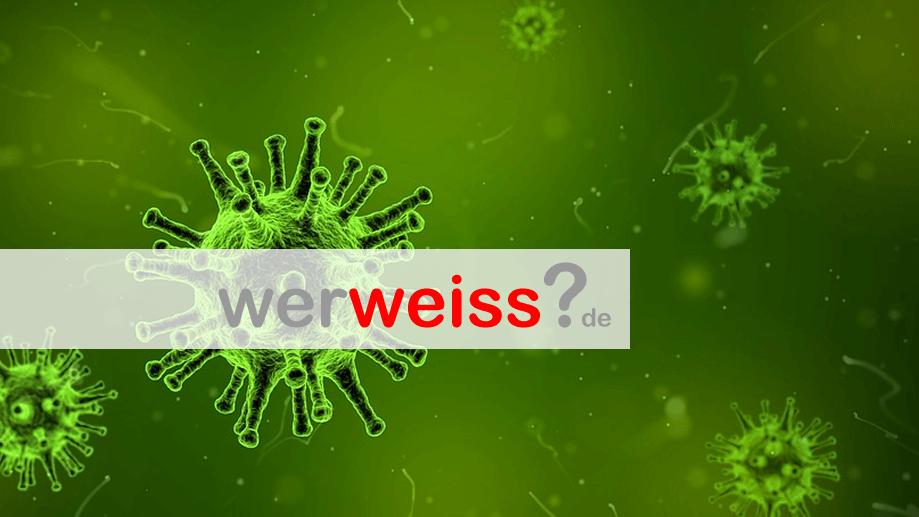 Unterschied zwischen Viren und Bakterien?